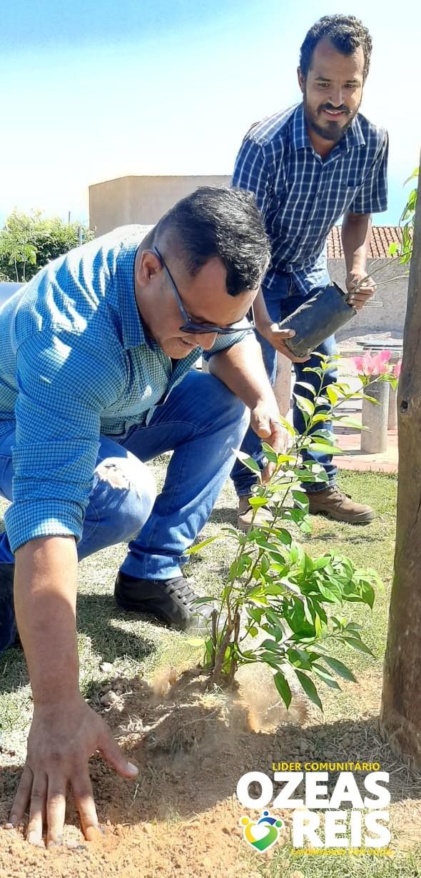A pedido do líder comunitário e vereador eleito Ozeas Reis, mudas de arvores Nativas flori firas foram plantadas na praça Osvaldo no bairro Residencial Antônio Geraldine e Melchiades Figueredo
